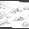 concept_amoeba_large_ship