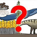 The Biggest Organism on Earth – Blue Whale? Mushroom? Giant Underground Panda? Alan Davies?